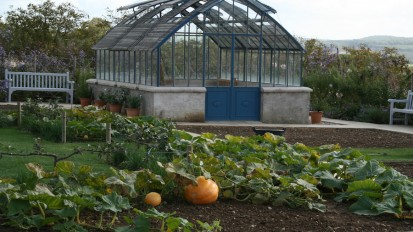 Michel Lis Greenhouse